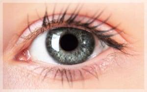 จอประสาทตาเสื่อม-โรคดวงตา